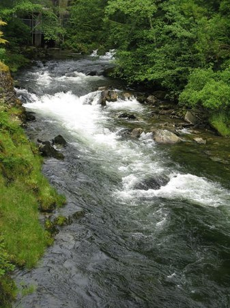 Tongass Historical Museum: Ketchikan Creek, next to the Married Man's Trail