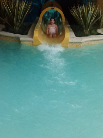 Slide Tube In Shark Tank Swimming Pool Picture Of Golden Nugget Hotel Las Vegas Tripadvisor