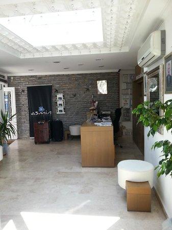 Asmin Hotel: Reception Area