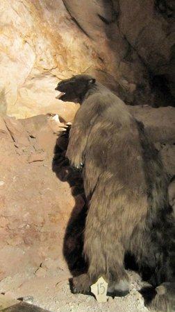 Grand Canyon Caverns: Giant Sloth