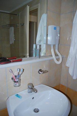 Alexandra Hotel: bagno-phon