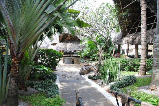 Scorpio Villas: In mezzo alla Natura!!