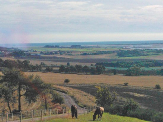 St Andrews Country Cabins: Looking towards Leuchars