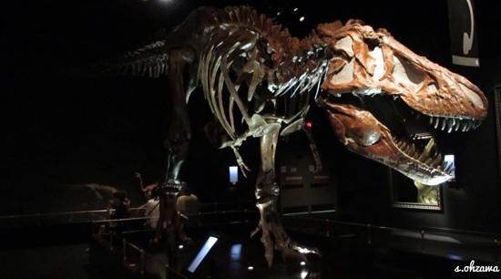 Canadian Rockies Van Tours - Canadian Co-ordinate Systems - One Day tour: ロイヤルティレル古生物博物館!恐竜がお迎えしてくれます。