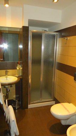 Hotel Vittorio Veneto : bathroom