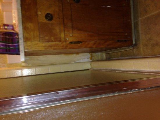 Sierra Nevada House: Water damage. Wallpaper peeling everywhere. Stained walls.