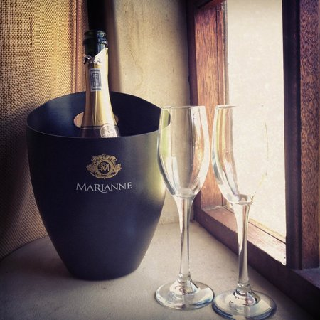 Marianne Wine Estate Guesthouse: Pre-wedding bubbles to calm the nerves