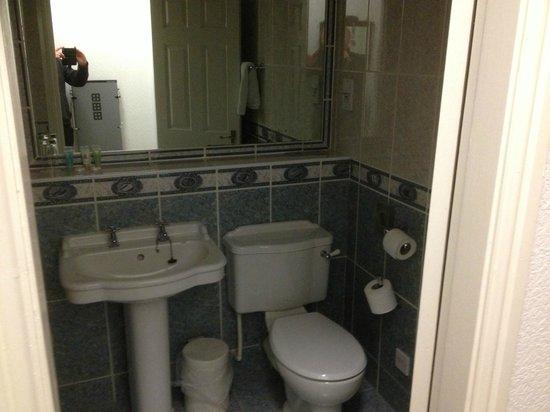 North Stafford Hotel: bathroom fine