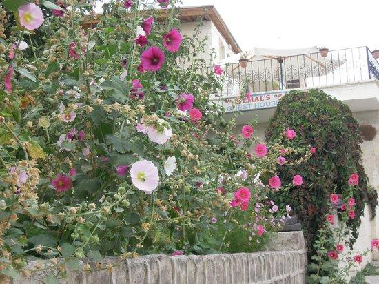 Kemal's Guest House: Toegang tot de tuin van het guest house
