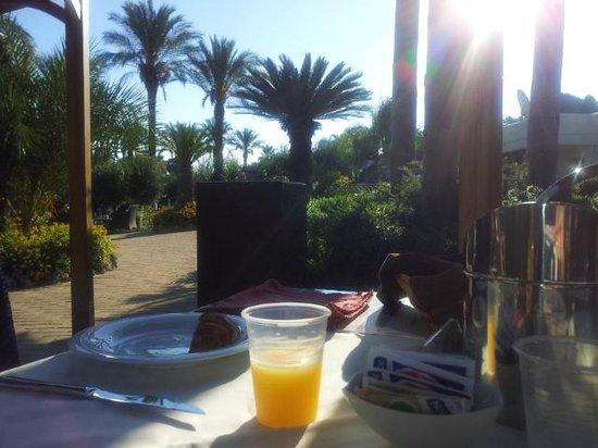 Green Paradise: colazione.....