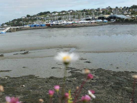 The Rivers End: Crosshaven