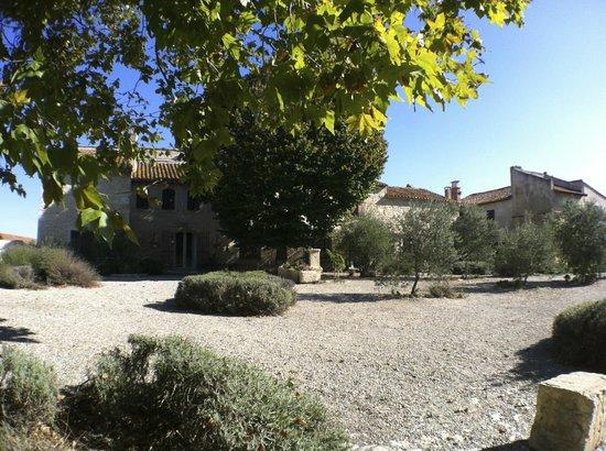Domaine Sainte-Cecile : Le Domaine