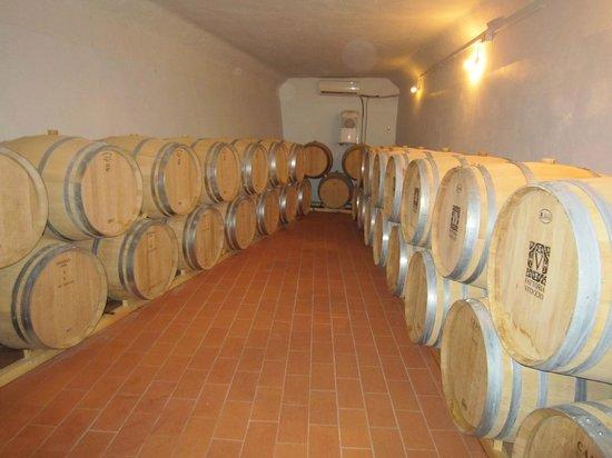 Fattoria Viticcio: Wine Barrels