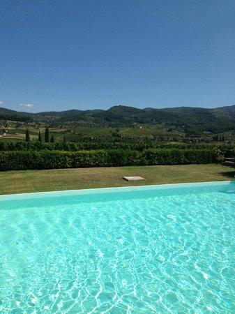 Fattoria Viticcio: View from Pool