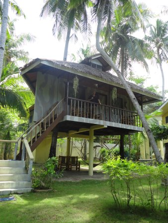 Polaris Beach and Dive Resort: Tree house