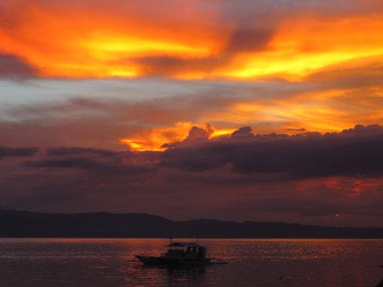 Polaris Beach and Dive Resort: Beautiful sunsets