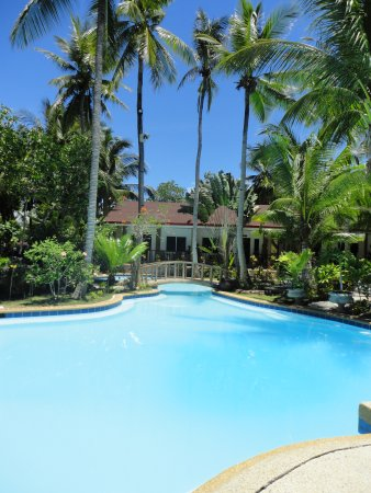 Polaris Beach and Dive Resort: Swimming pool
