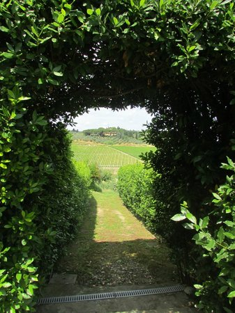 Ciao Laura Day Excursions : Views of the estate at La Quercia