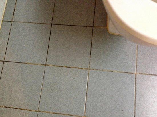 Check Inn Regency Park : Mildew in the grout. Not surprised. The bathroom isnt cleaned.