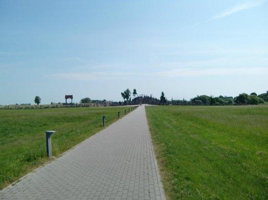 Berg der Kreuze Šiauliai: Fußweg zum Berg der Kreuze