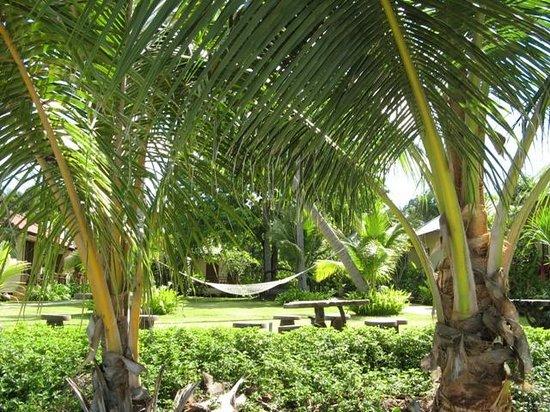 Promtsuk Buri: Garden area