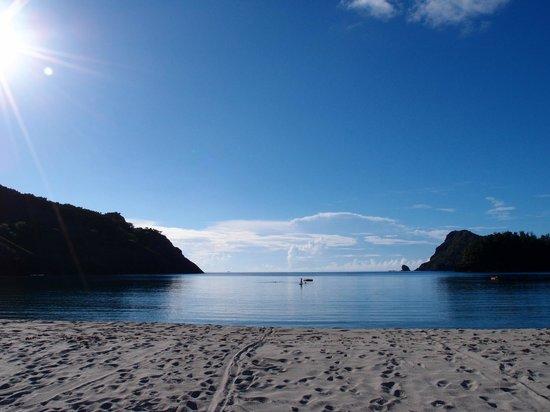 Kominato Beach: 夏休み~