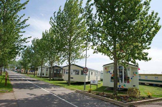 Sheerness Holiday Park: caravans for sale