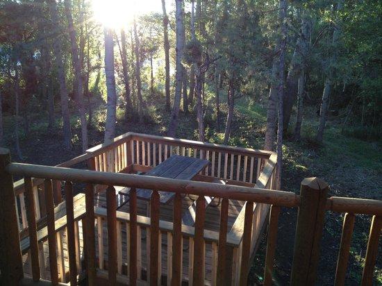 Livingston / Paradise Valley KOA : Gone Fishing Cabin deck