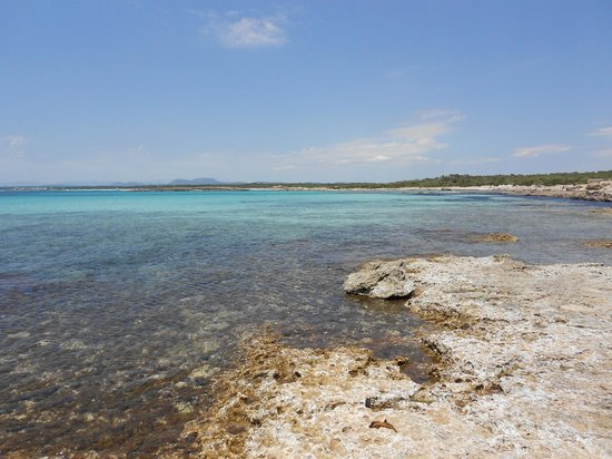 Es Trenc: best beach in Mallorca
