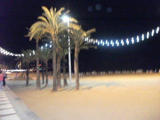 La Era Park Apartments: beach at night