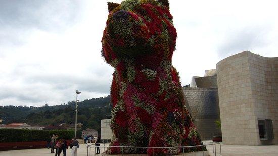 Hotel Miró: Guggenheim flower dog