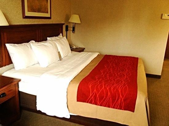 Comfort Inn & Suites Ponca City: King room