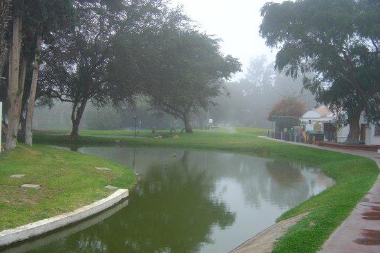Hotel Las Dunas: Parco