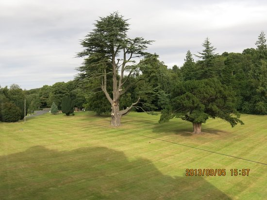 Dalhousie Castle: The view from 1/F room