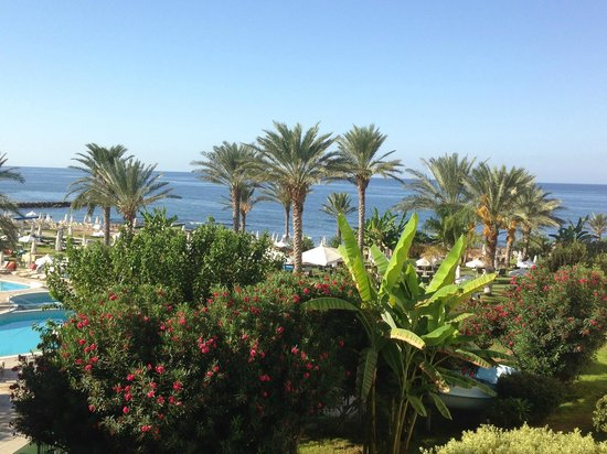 Constantinou Bros Athena Beach Hotel: Lovely morning view from room