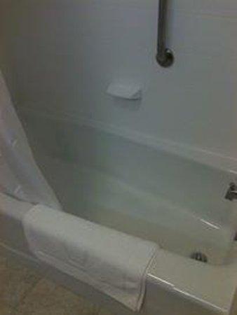 Hampton Inn & Suites Washington, DC North / Gaithersburg: Bath/shower.  Low wall so easy to enter/exit