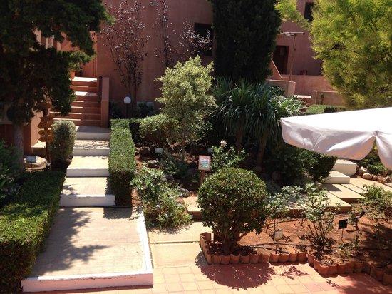 Κoutouloufari Village Holiday Club : Garden