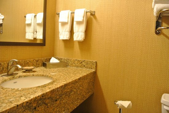 Canal Park Lodge: Bathroom