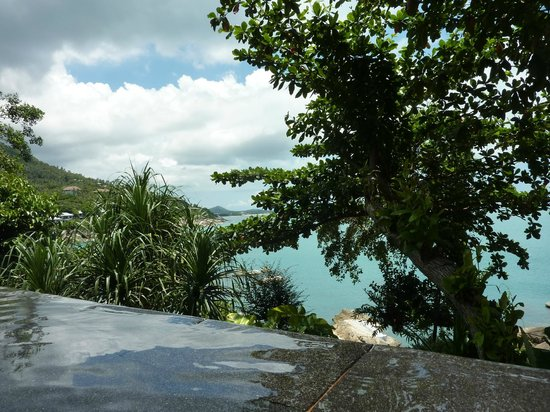 The Kala Samui : Pool view