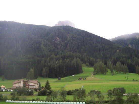 Hotel Waldheim : panorama