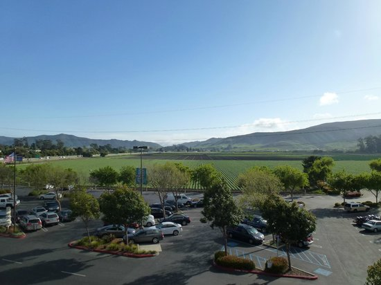 Embassy Suites by Hilton San Luis Obispo : View from room