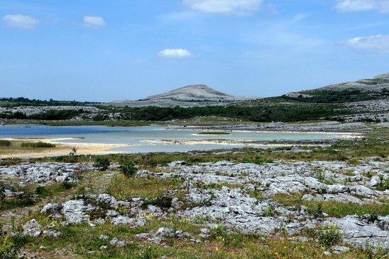 Heart of Burren Walks: Turlough area in The Burren
