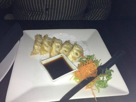 Tee Jay Thai Sushi in Wilton Manors: Pan Fried Gyoza