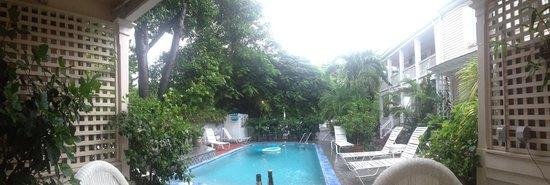 Mango Tree Inn : Pool area