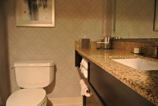 DoubleTree by Hilton Des Moines Airport: Bathroom