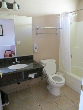 Hotel 414 Anaheim: Badkamer