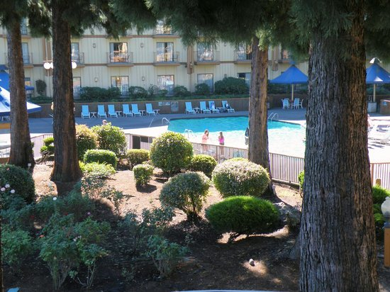 Red Lion Hotel on the River: A look at the pool side
