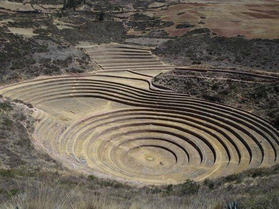 Quinua Villa Boutique: Inca terraces in Maras
