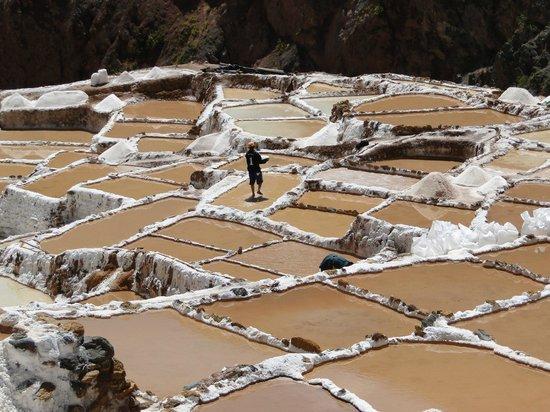 Quinua Villa Boutique: Salt Mines, Maras