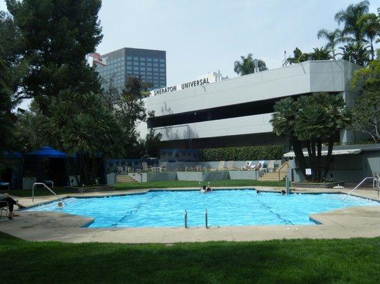 Hilton Los Angeles/Universal City : Pool area